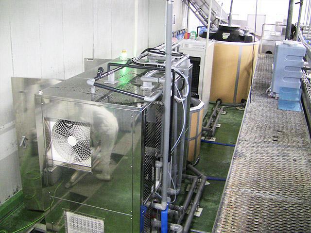 食品工場 殺菌洗浄